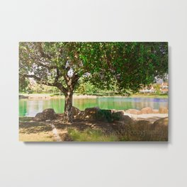 tree by the lake || color Metal Print