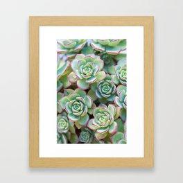 Green grass pattern Framed Art Print