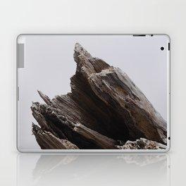 Drift Mountain Laptop & iPad Skin