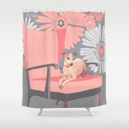 Dog in a chair #3 Italian Greyhound Shower Curtain
