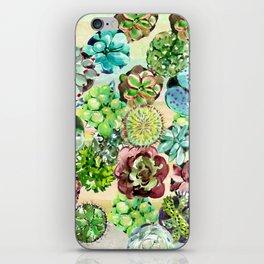 Succulents,Desert vibes iPhone Skin