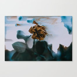 Glitched Rose Color Canvas Print