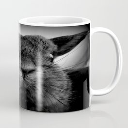 Disapproving Peanut Coffee Mug