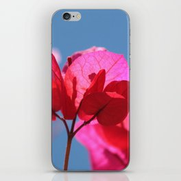 Bougainvillea II iPhone Skin