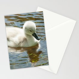 Little explorer Stationery Cards
