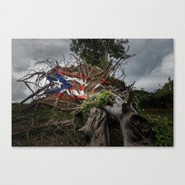 Puerto Rico Pride Canvas Print