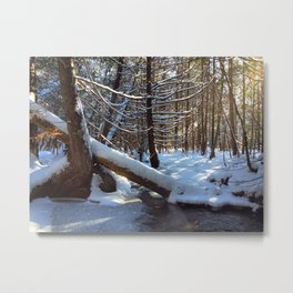 A winter hike Metal Print