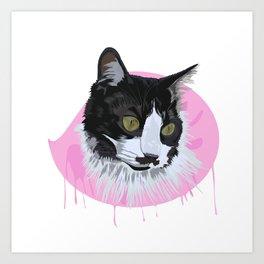Domestic Cat Art Print