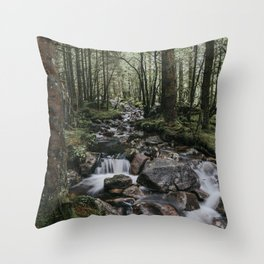 The Fairytale Forest - Landscape and Nature Photography Throw Pillow