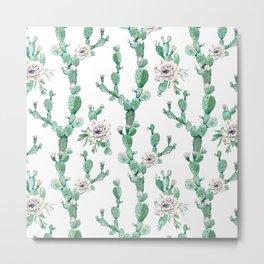 Cactus Rose Climb on White Metal Print