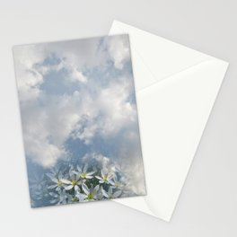 Window Curtains - Morning Fresh Stationery Cards
