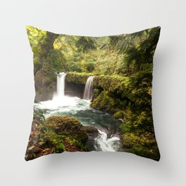 USA Leaf Silver Falls State Park Nature Waterfalls Parks Trunk tree Moss Foliage park Throw Pillow