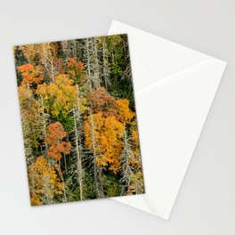 Oh, the Hemlocks! * Linville Gorge * B4 the Table Rock fire  Stationery Cards