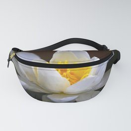 White Water Lily Black Background Fanny Pack