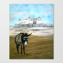 Seaside Donkey Canvas Print