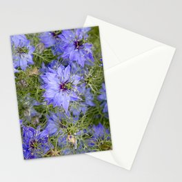 Love in the Mist Stationery Cards