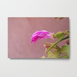Hard to Concentrate Metal Print