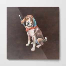 American English Coonhound Metal Print