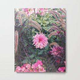 Une jolie fleur rose / A pretty pink flower Metal Print