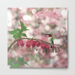 ruby-throated hummingbird on bleeding heart (with bokeh) Metal Print