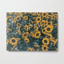 Sunny Metal Print