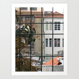 Porto: Gato Art Print