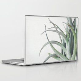 Air Plant II Laptop & iPad Skin
