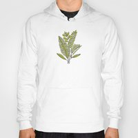 study Hoodies featuring Fern Study by Heather Dutton