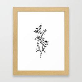 Carolina Jessamine Wildflower Framed Art Print