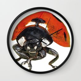 Ladybug Insect Point Retracted Stitch beetle Appearance Wall Clock