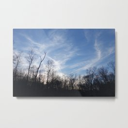 Goucher Woods Metal Print