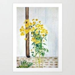 sun choke flowers outside a house Art Print