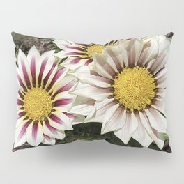 Zany Gazania - red and white stripes Pillow Sham