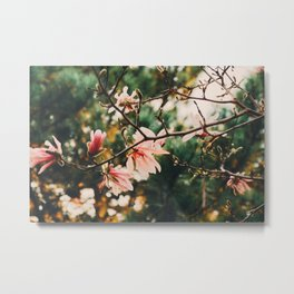 Nature Wallpaper Metal Print