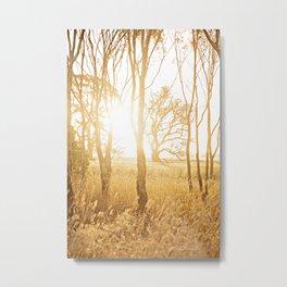 A Bush Sunset Metal Print