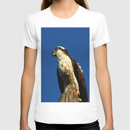 Osprey With His Dinner Leftovers T-shirt