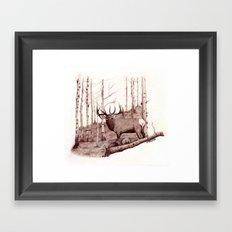 Quakies Framed Art Print