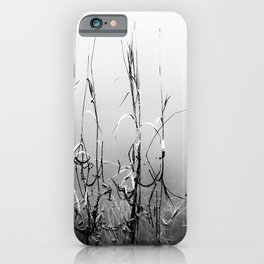 Echoes Of Reeds 1 iPhone Case