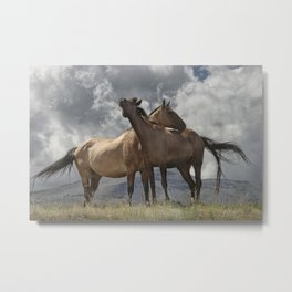 Montana Horses near Glacier National Park Metal Print
