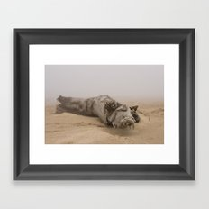 Fog On The Beach Framed Art Print
