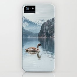 Couple of swans, Alpsee lake iPhone Case