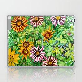 Gazanias Laptop & iPad Skin