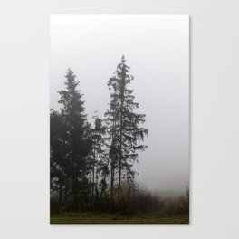 Silhouette autumn spruce Canvas Print