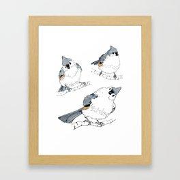 Titmouse Framed Art Print