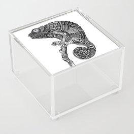 Chameleon Acrylic Box