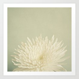 Pale Beauty Art Print