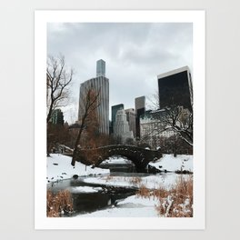 Chilly NYC Art Print