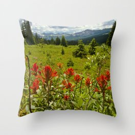 Red paintbrush with mountain view Throw Pillow
