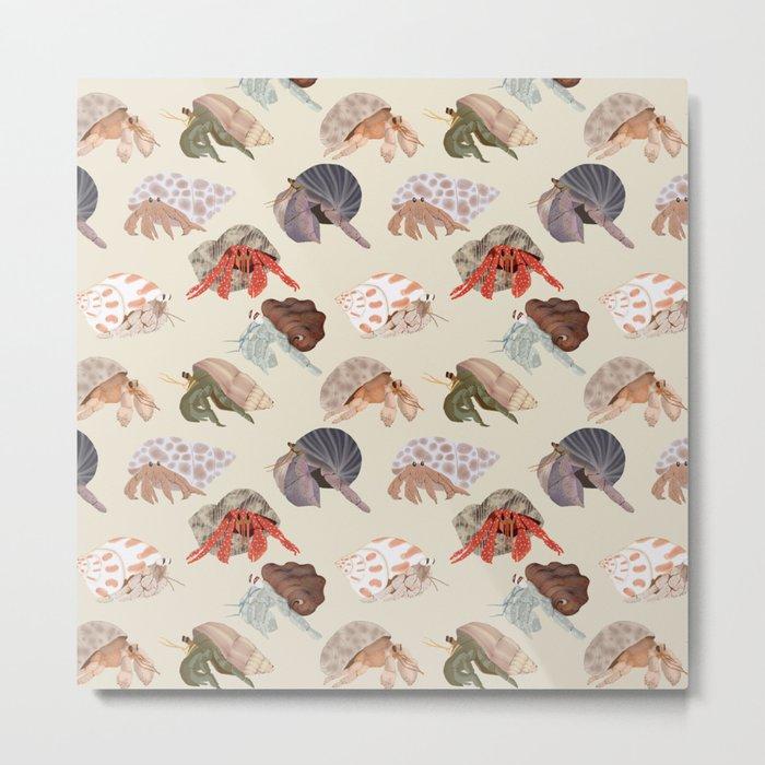 Hermit Crabs Metal Print