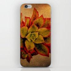 suc. #2 iPhone & iPod Skin